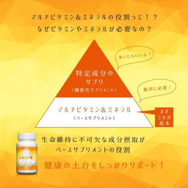 マルチビタミン サプリメント ミネラル ビタミン ヘルスケア ベース サプリ アミノ酸 BCAA 健康 サポート ミネビタ+ 120粒 60日分|rise-one|04