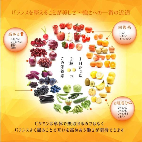 マルチビタミン サプリメント ミネラル ビタミン ヘルスケア ベース サプリ アミノ酸 BCAA 健康 サポート ミネビタ+ 120粒 60日分|rise-one|05