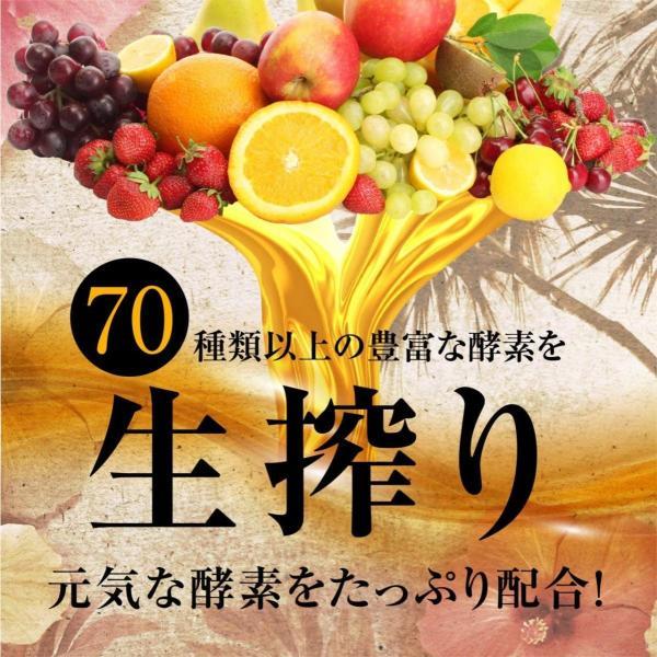 コンブチャ 酵素 ドリンク 置き換え ダイエット 食品 国産 生酵素 健康 フルーツ 飲料 ファスティング コンブチャ ヘルシーボ 1本 70種類 720ml|rise-one|08