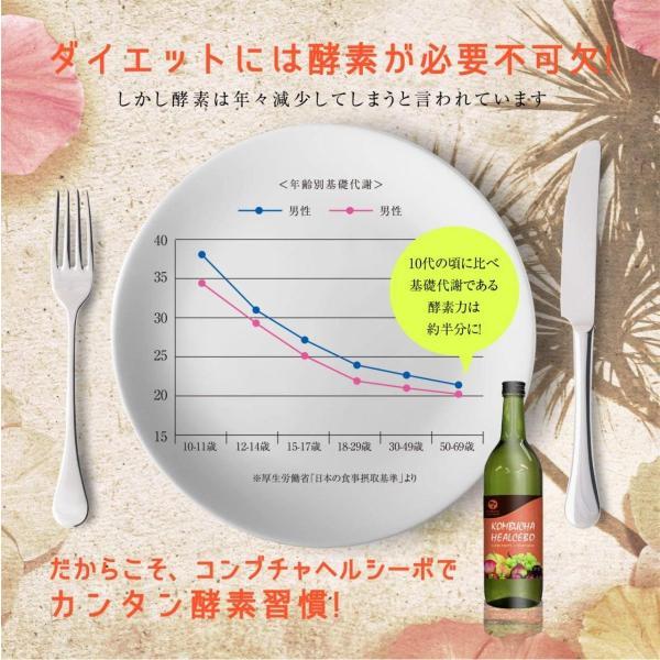 コンブチャ 酵素 ドリンク 置き換え ダイエット 食品 国産 生酵素 健康 フルーツ 飲料 ファスティング コンブチャ ヘルシーボ 1本 70種類 720ml|rise-one|05