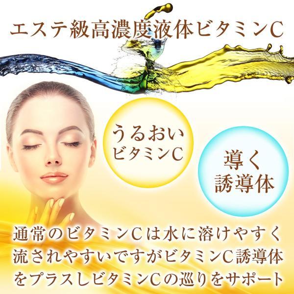 高濃度ビタミンC サプリ ビタミンC 誘導体 サプリメント αリポ酸 液体ビタミンC レモン風味 VITALYPO-C 30包 1ヶ月分 1100mg|rise-one|02