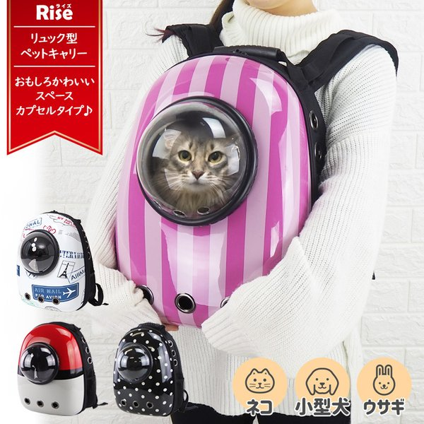 猫 キャリーバッグ キャリー リュック キャリー ケース バッグ ねこ ネコ ペット ペットキャリー 宇宙船 ドライブ かわいい 猫用 メッシュ 通院|risecreation
