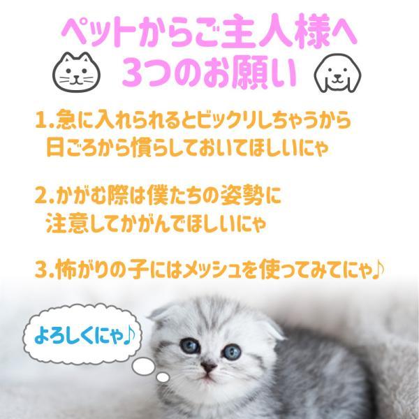 猫 キャリーバッグ キャリー リュック キャリー ケース バッグ ねこ ネコ ペット ペットキャリー 宇宙船 ドライブ かわいい 猫用 メッシュ 通院|risecreation|08