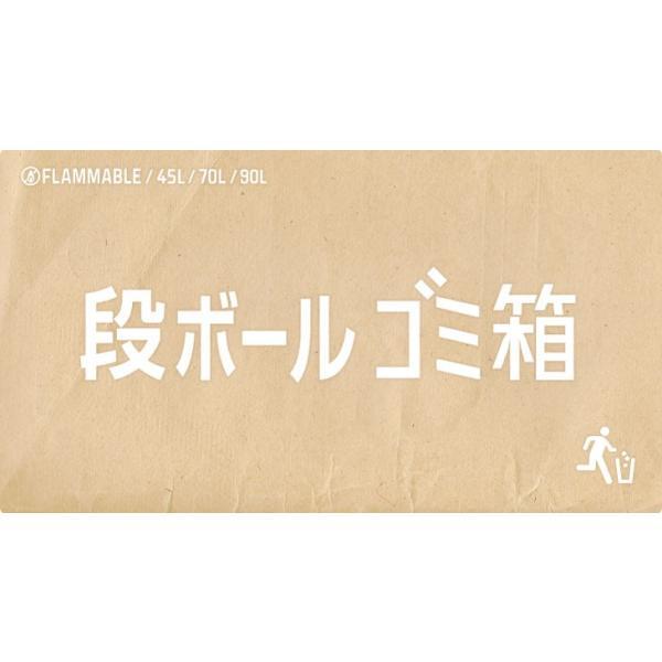 ダンボールゴミ箱(2枚組) 45リットル 使い捨て アウトドア イベント 野外 分別|risu-onlineshop|02
