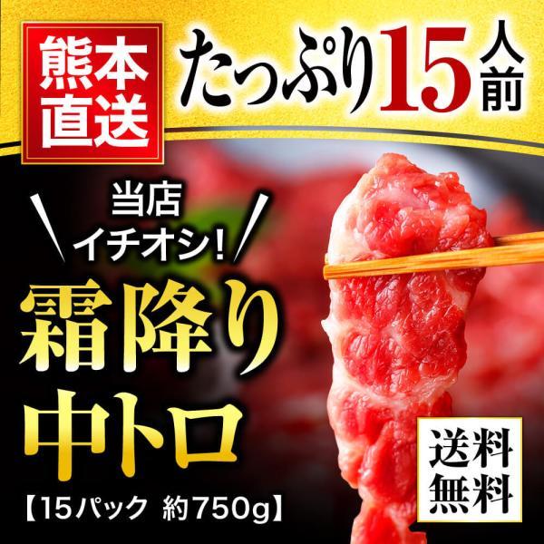 敬老の日 馬刺し 熊本 国産 中トロ 霜降り 750g 約50g×15 約15人前 馬肉 ギフト 食べ物 おつまみ