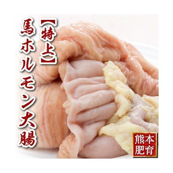 馬刺し 熊本 国産 特上 ホルモン 大腸 約500g 馬肉 ギフト 食べ物 おつまみ