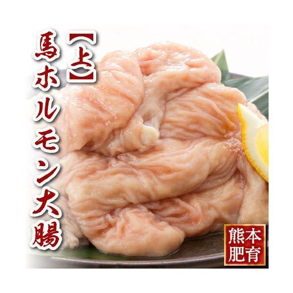 馬刺し 熊本 国産 上 ホルモン 大腸 約500g 馬肉 ギフト 食べ物 おつまみ