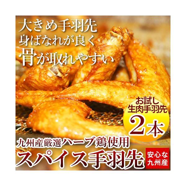 お中元 2021 鶏肉 国産 手羽先 唐揚げ お試し 198円 鶏 2本 鶏肉料理 ギフト お土産 食べ物 惣菜 おつまみ