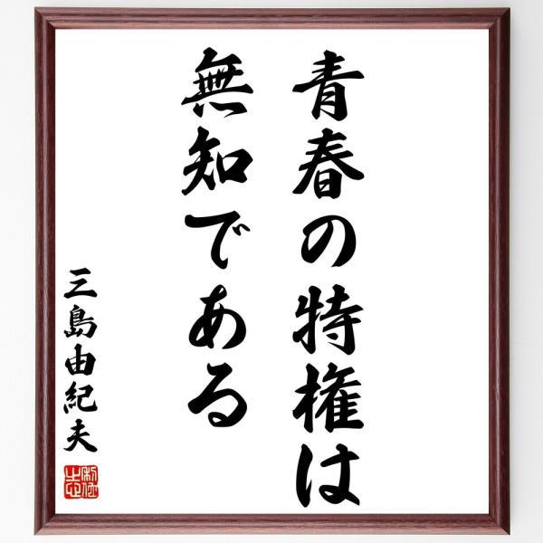 三島由紀夫の名言書道色紙『青春の特権は無知である』額付き/受注後直筆|rittermind