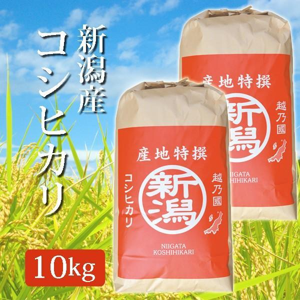 米 令和2年産 2020年度産 玄米 新潟県産コシヒカリ こしひかり 10Kg (10キロ)  5kg×2袋 新潟産 コシヒカリ 代引不可 同梱不可