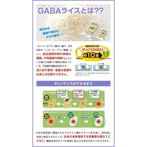 家庭用精米機 マジックミル ギャバミル 3合 GABA精米コース RSKM3D|roomdesign|03