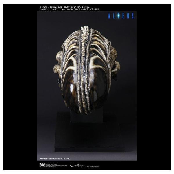 エイリアン2/ エイリアンウォーリアー ライフサイズヘッド プロップレプリカ|roswell-japan|06