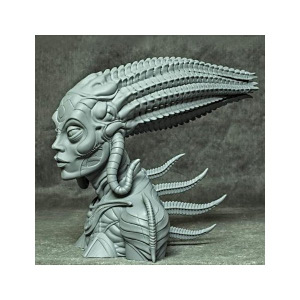 Sil 1/2scale Bust kit【取り寄せ】|roswell-japan|02