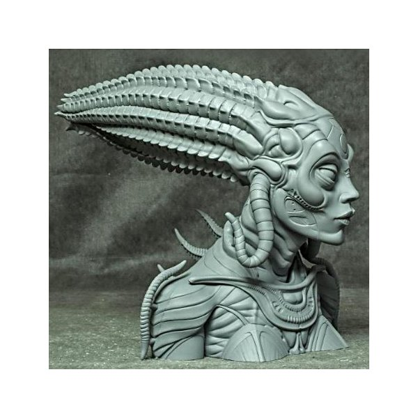Sil 1/2scale Bust kit【取り寄せ】|roswell-japan|03