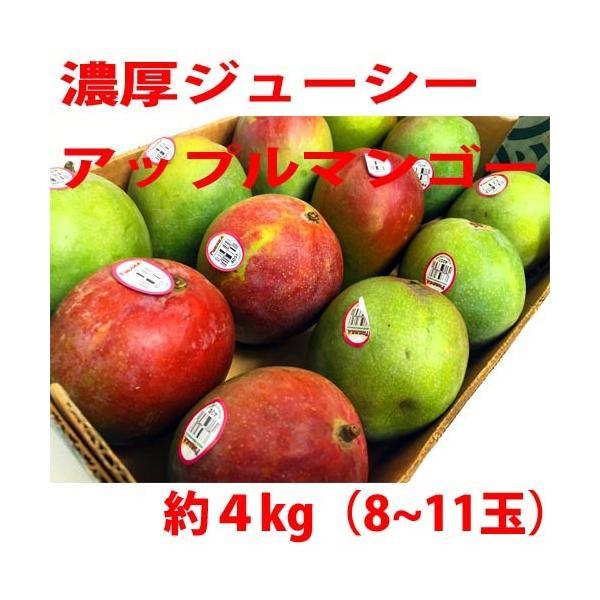 アップルマンゴー 4kg (9~12玉前後 )メキシコ産 濃厚 ジューシー フルーツ 果物 生マンゴー ドライマンゴー