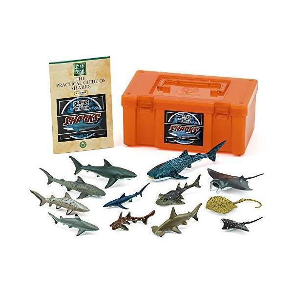 カロラータサメの仲間フィギュア(立体図鑑)魚リアルフィギュアボックス 解説書付き 食品衛生法クリア12種