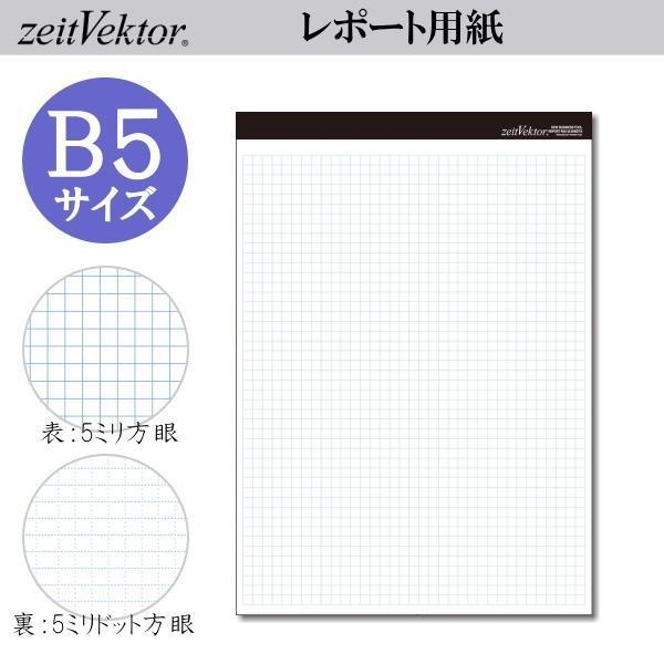zeit Vektor/ツァイトベクター レポート用紙 B5サイズ ミシン目付き両面使用可能タイプ 方眼・ドット方眼 レイメイ藤井 24-ZVP425 【ネコポス可】