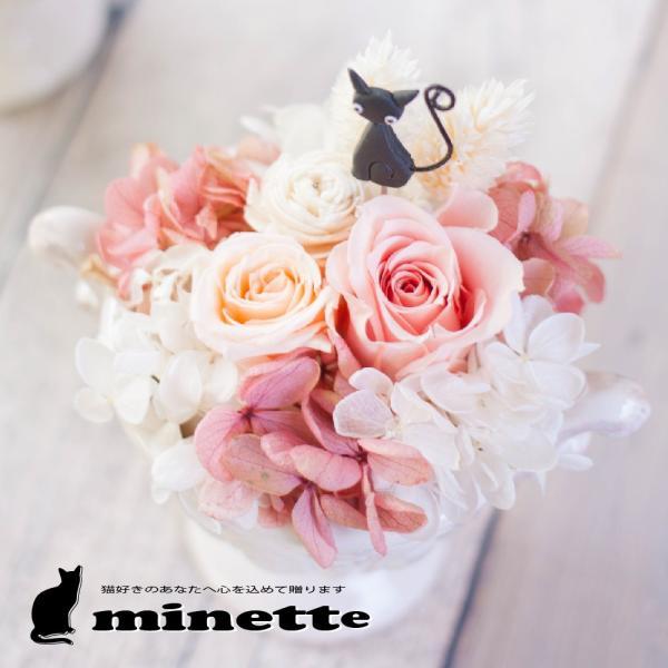『minette ミネット 猫』