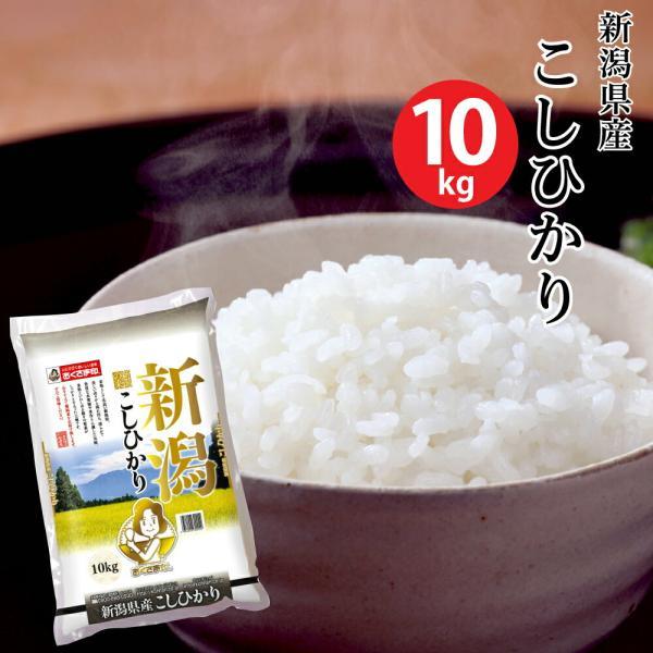 【米 10キロ 送料無料】新潟県産こしひかり 10kg【おこめ コメ 白米】