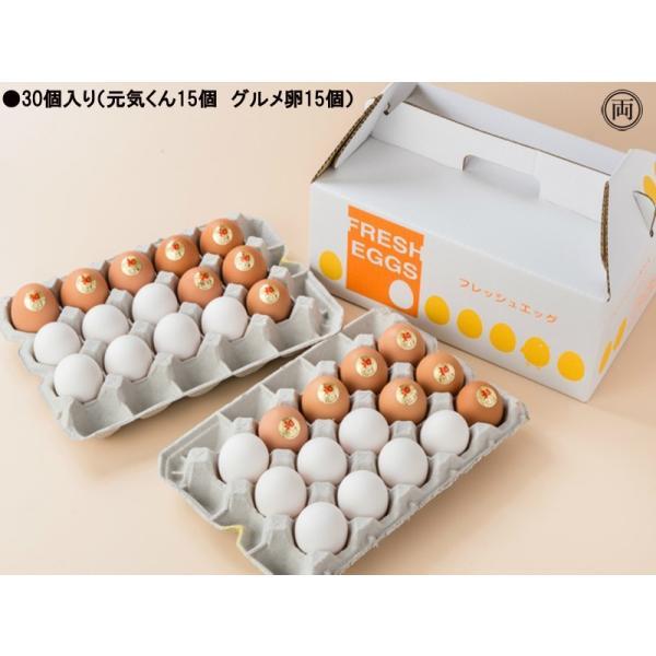 農場直送 元気くん×グルメ卵 ミックス詰め合わせ 30個入り 愛知県産 国産養鶏 鶏 卵かけごはん TKG ニワトリ にわとり たまご 花井養鶏場 送料無料