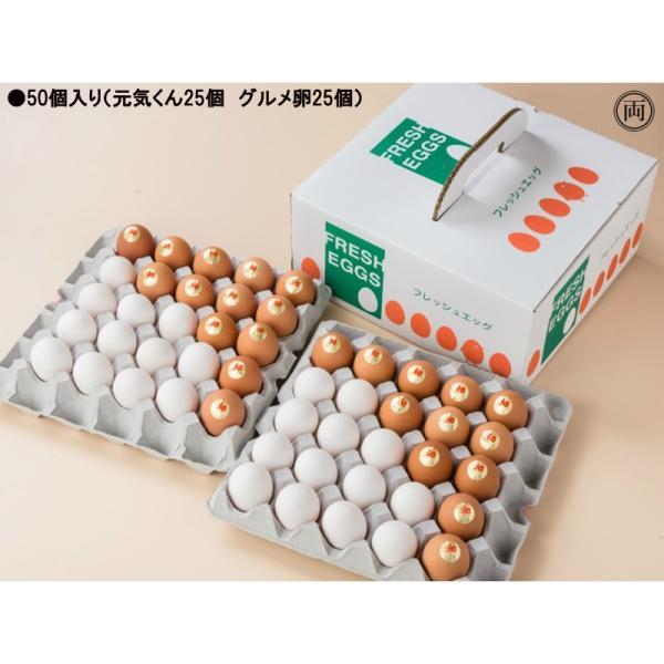 農場直送 元気くん×グルメ卵 ミックス詰め合わせ 50個入り 愛知県産 国産養鶏 鶏 卵かけごはん TKG ニワトリ にわとり たまご 花井養鶏場 送料無料