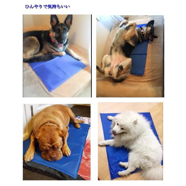 ペットひんやりマット クール 冷え冷えマット 冷感ベッド 犬・猫用冷却シート ペット暑さ対策グッズ 中・大型犬用XL(50*90cm) rysss 06