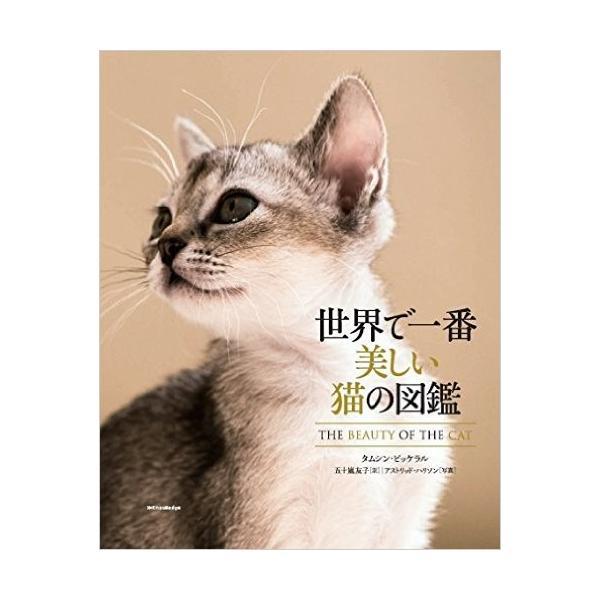世界で一番美しい猫の図鑑 ryusei-do