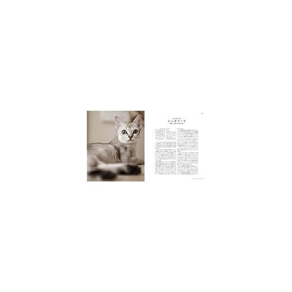 世界で一番美しい猫の図鑑 ryusei-do 03
