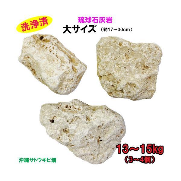 【送料無料】F 琉球石灰岩 洗浄済 大サイズ 13〜15kg(3〜4個)