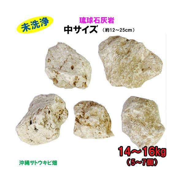 【送料無料】C 琉球石灰岩 未洗浄 中サイズ 14〜16kg(5〜7個)