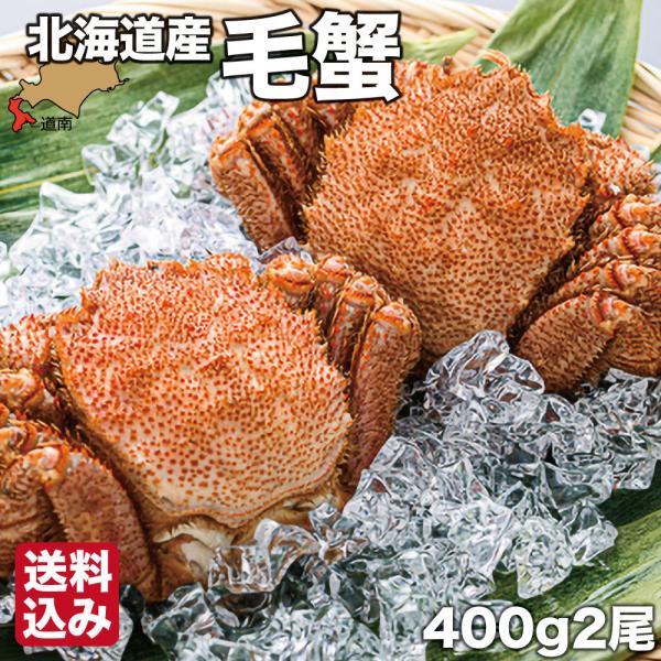 北海道産 毛がに 400g×2 噴火湾 ギフト 浜ゆで ボイル 毛蟹 冷凍 森町 森水産加工業協同組合 送料無料