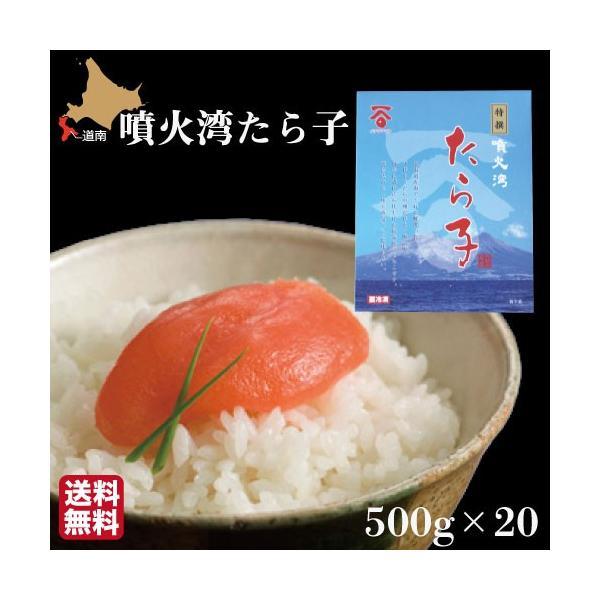 たらこ 10kg(500g×20箱) 北海道産 化粧箱入 噴火湾 長谷川水産 ギフト 産地直送 送料無料