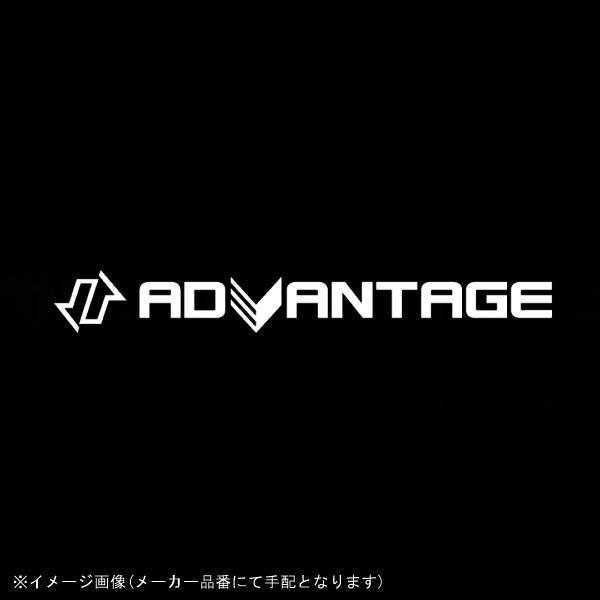 [5410-S050-2GO] ADVANTAGE(アドバンテージ) EXACT2 350/550-17 ゴールド BANDIT1250ABS