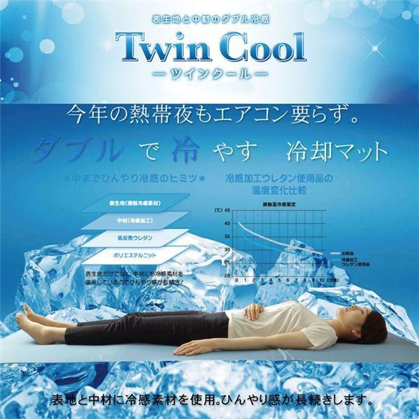 冷感 枕パッド/寝具 〔プリント 約40cm×50cm〕 洗える 低反発 接触冷感 『ツインクール 枕パッド』 〔寝室〕佐川急便で発送します|s-waza|03