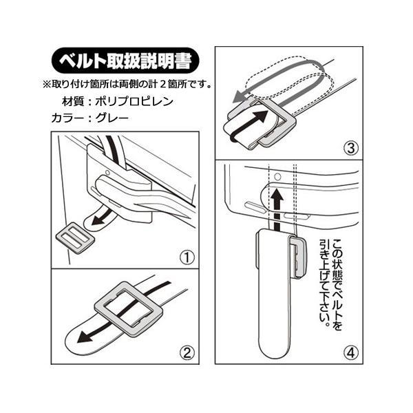 クーラーボックス 小型 バン マスタークール 9L|s-zakka-show|04