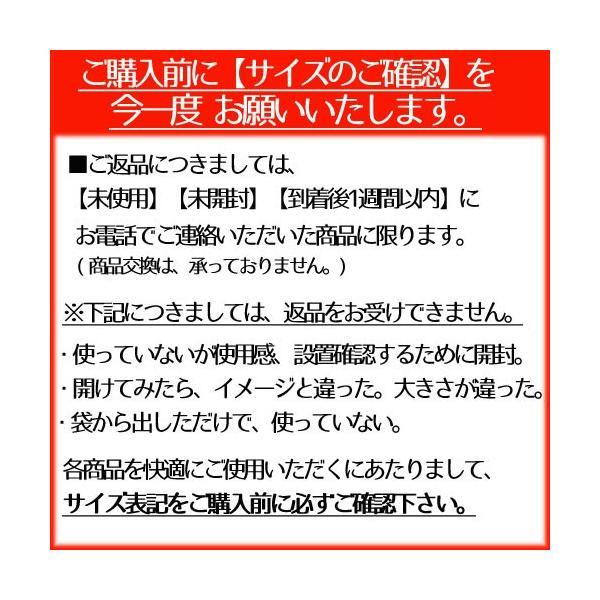 クーラーボックス 小型 バン マスタークール 9L|s-zakka-show|05