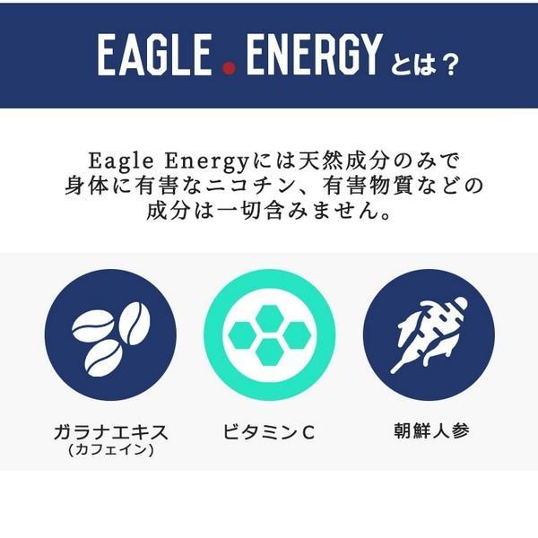 EAGLE ENERGY イーグルエナジー 吸う エナジードリンクフレーバー  エナジードリンク 糖質ゼロ カロリーゼロ ニコチンゼロ 【正規品】 (3本入り)|sabb|03