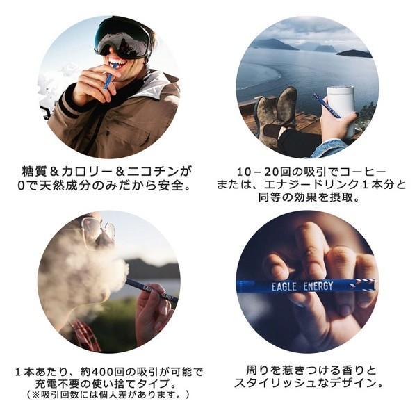 EAGLE ENERGY イーグルエナジー 吸う エナジードリンクフレーバー  エナジードリンク 糖質ゼロ カロリーゼロ ニコチンゼロ 【正規品】 (3本入り)|sabb|06