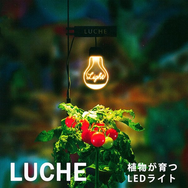 栽培用ライト LEDスタンドライト 植物栽培 植物育成 野菜 照明 LED USB電源 デスクライト プレゼント ポットランド LUCHE ルーチェの画像