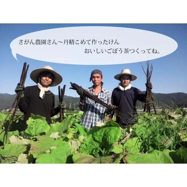 ごぼう茶 2.5g×50包 送料無料 九州産 ごぼう茶 国産 ティーパック 2.5g×30包+レビューを書いて20包増量中 健康茶さがん農園|sagan-nouen|03