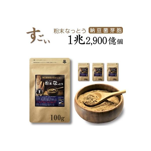 こなの納豆!【粉末 なっとう】 300g (100g×3袋)・・・なめらかな粉納豆です。・・・