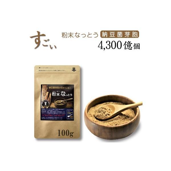 こなの納豆!【粉末 なっとう】 100g・・・なめらかな粉納豆です。・・・