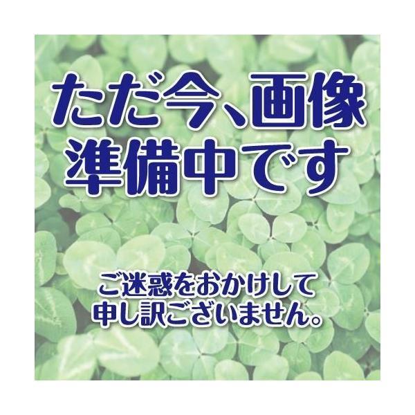 オクラの種 皇星オクラ 20ml ( 野菜の種 )