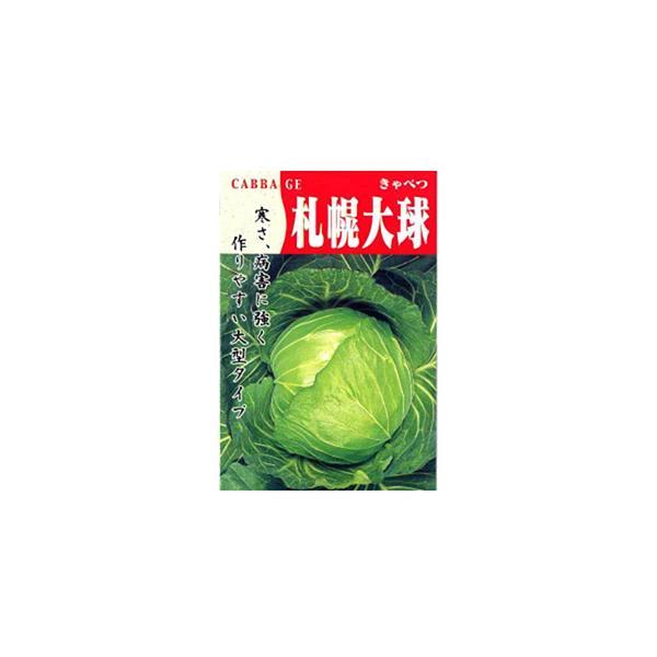 キャベツの種 札幌大球(4号) 小袋