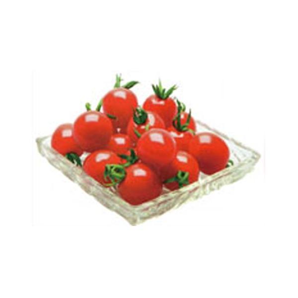 ミニトマトの種 プレミアムルビー 18粒 ( 野菜の種 )