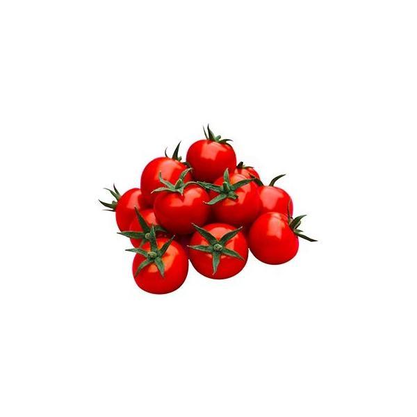 ミニトマトの種  TY花鳥風月  500粒 ( 野菜の種 )