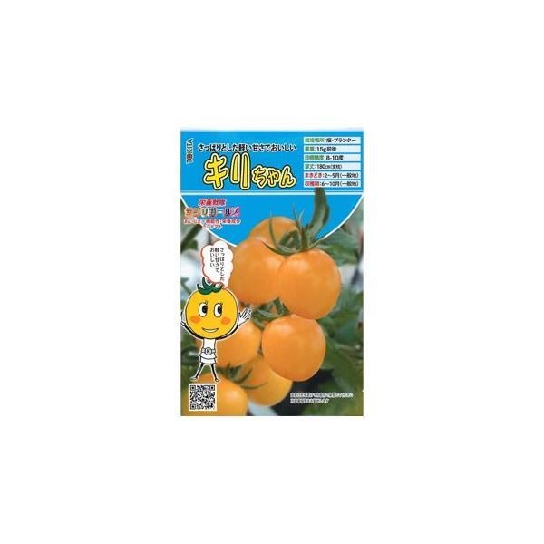 ミニトマトの種 キリちゃん  8粒 ( 種 野菜 野菜種子 野菜種 ) ( 野菜の種 )