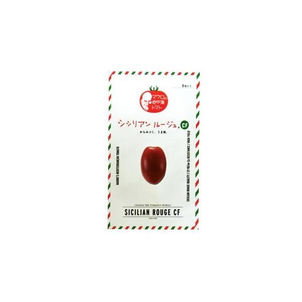 ミニトマトの種 シシリアンルージュCF 8粒 ( 野菜の種 )