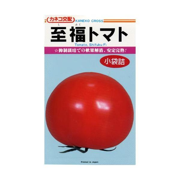 大玉トマトの種 トマト至福 25粒 ( 野菜の種 )