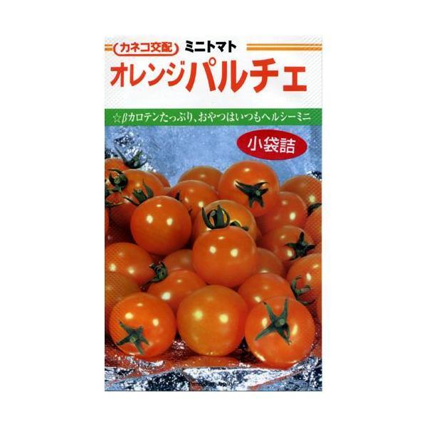 ミニトマトの種 オレンジパルチェ コート600粒 ( 野菜の種 )